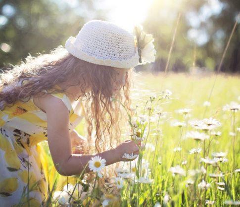 Kesälehdet ilmestyvät – ole läsnä lukijoidemme kesässä
